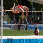 Athletic High Jump Landing Mat in Badnaban 5